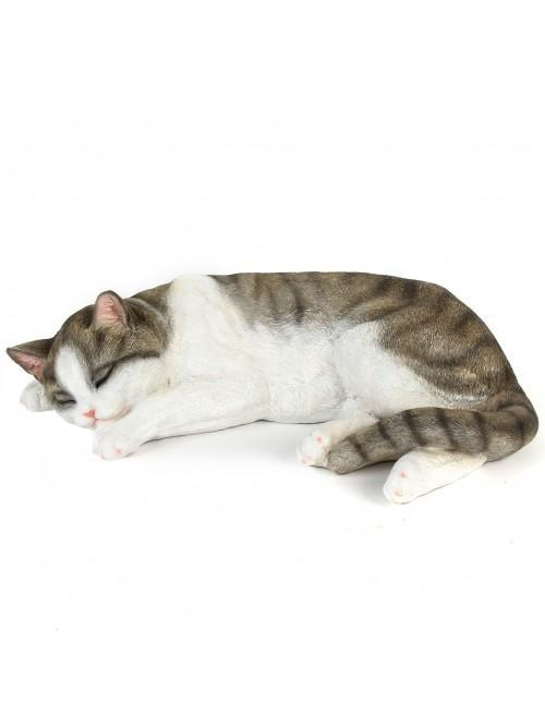 Best of Breed Collection - Cat