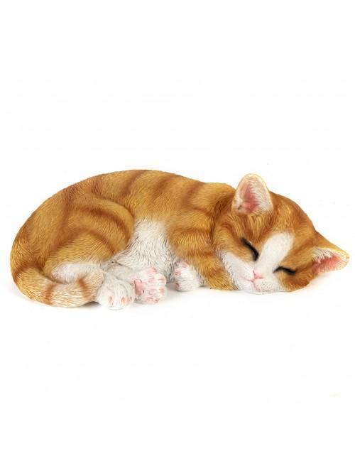 Best of Breed Collection - Ginger Kitten Sleeping