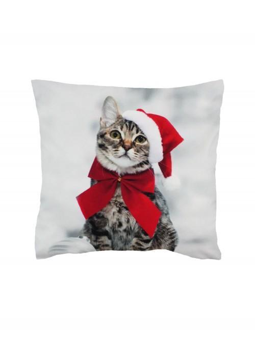 Photographic Kitten Cushion Red